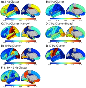Fig. 7: Proportion of electrodes in each cortical area (as defined by the Desikan-Killiany atlas) belonging to each cluster. Electrodes from both hemispheres have been combined to increase the number of electrodes per area. Only areas covered by more than one electrode (out of all 1208) are colored. All other areas are shown in gray.